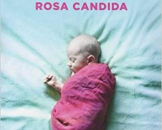 """Un libro di cui puoi sentire il profumo: """"Rosa candida"""" di Audur Ava Ólafsdóttir (Furlan Elena Sofia)"""