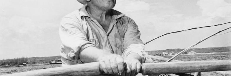 """Il compenso dell'anima: """"Il vecchio e il mare"""" di Hemingway (Milena Di Fusco)"""